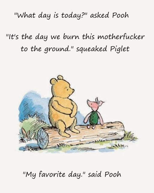 pooh burns it down