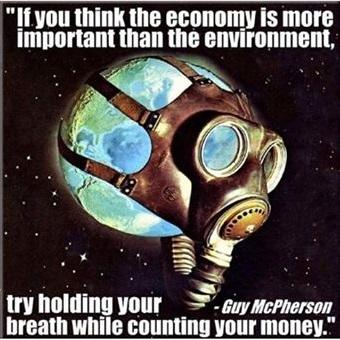 economy vs environment