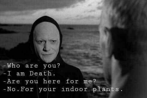 Death plants